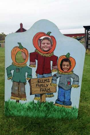 Ballston Spa school district offers a chance for families throughout the district to attend a Fall Family Festival at Ellms Family Farm on from 10 a.m. to 5 p.m. Saturday, Oct. 19, on 448 Charlton Road in Ballston Spa. Admission is $11 per person, and free for those 2 years old and under. (Submitted photo)