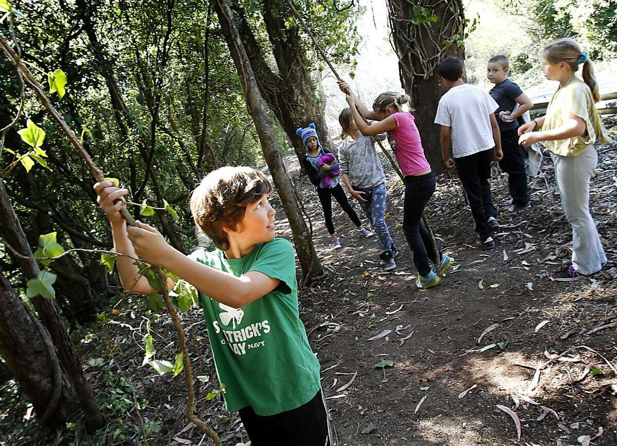 Eoin Newby, 10, of San Francisco, plays with ivy while hiking with his after school program along the new Recreation and Parks trail that leads up Twin Peaks Boulevard in San Francisco, Calif., on Thursday, October 10, 2013.