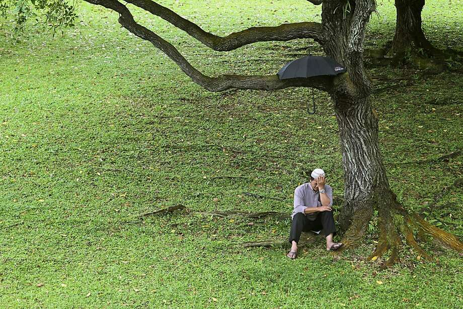 A Muslim pauses to reflect after using a tree for an umbrella holder outside the Darul Makmur Mosque during Eid al-Adha celebrations in Singapore. Photo: Wong Maye-E, Associated Press