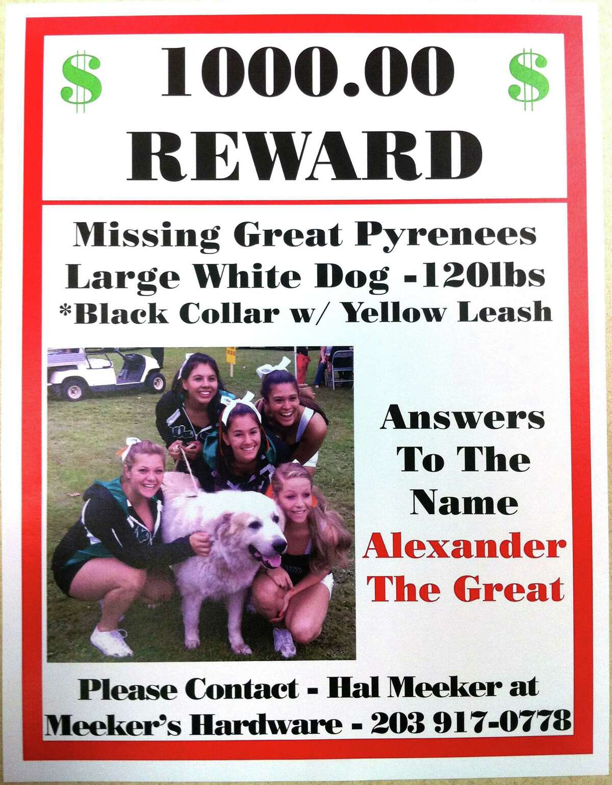 The owner of Alex, the 120 lb. Great Pyrenees dog who went missing from behind Meeker's Hardware Store on Sept. 29, is now offering a $1,000 reward.