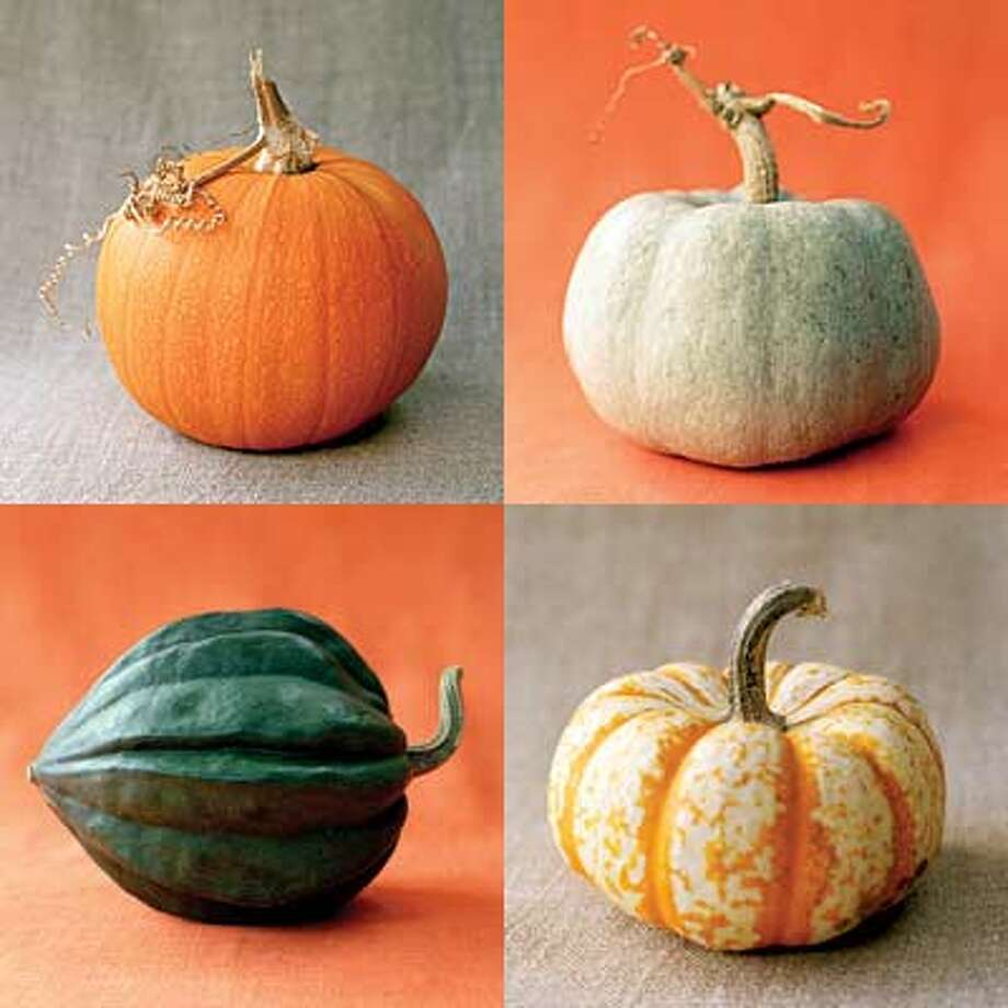 A pumpkin can come in many different colors, and is actually a fruit, not a vegetable. Source: Yahoo.com. Photo: Thayer Allyson Gowdy, Sunset.com