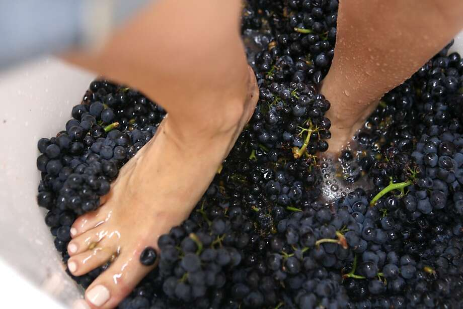 """Sarah Chastain stomps Pinot grapes in a tub outside San Francisco Brewcraft. """"It feels awesome, really cool,"""" says Chastain, who with her husband makes wine in San Rafael. Photo: Raphael Kluzniok, The Chronicle"""