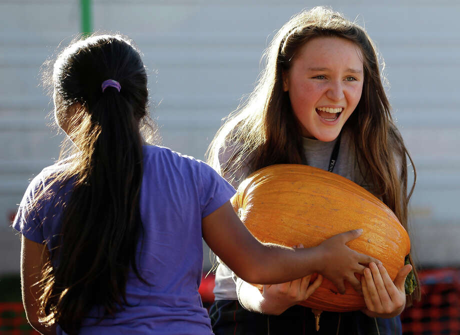 Megan Clarke, 16, right, reacts after Jennessy Hernandez, 14, hands her a large pumpkin as they help unload a semi-trailer truck full of pumpkins at the Miami Shores Presbyterian Church, Tuesday, Oct. 15, 2013 in Miami Shores, Fla. The church's pumpkins were delayed three days on their trip South due to bad weather in Georgia. Photo: Wilfredo Lee, AP / AP