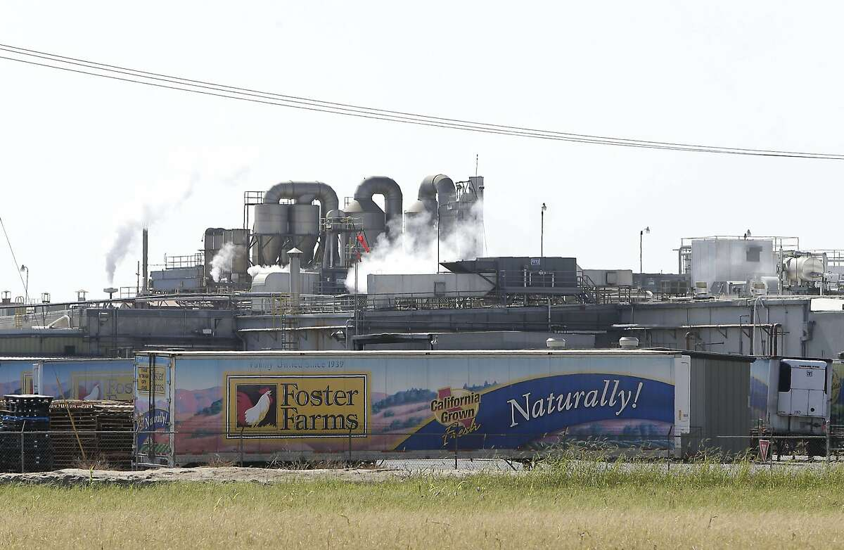 This photo shows a Foster Farms processing plant on Thursday, Oct. 10, 2013, in Livingston, Calif. The plant is one of three California poultry processing plants linked to a salmonella outbreak that has sickened 278 people across the country. The Agriculture Department said that Foster Farms has until Thursday to tell the USDA how it will fix the problem. Sampling by USDA in September showed that raw chicken processed by those facilities included strains of salmonella that were linked to the outbreak. (AP Photo/Rich Pedroncelli)
