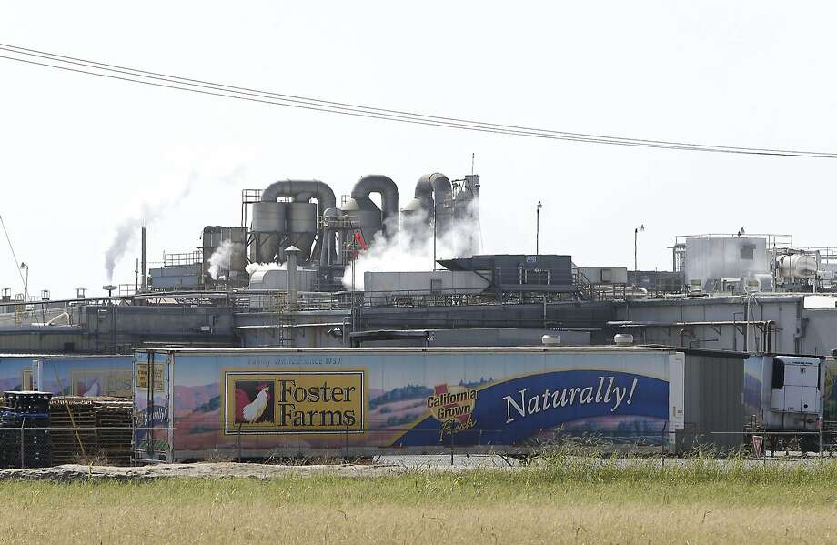 Foster Farms' plant in Livingston (Merced County) has had problems with cockroaches and salmonella. Photo: Rich Pedroncelli, Associated Press