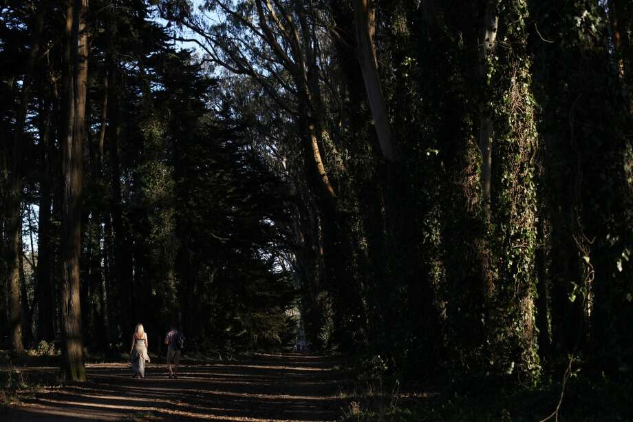 A couple walks on a trail near Inspiration Point in the Presidio on October 5, 2013 in San Francisco, Calif. Photo: Pete Kiehart, The Chronicle