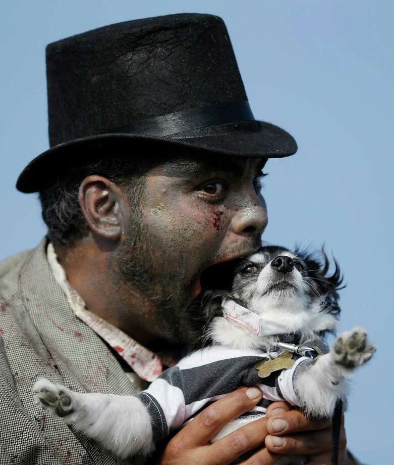 Zeke Forbes, of Neptune, N.J., pretends to bite a dog named Ziggy while posing for a photograph during a zombie walk at the Asbury Park boardwalk, Saturday, Oct. 5, 2013, in Asbury Park, N.J. According to Guinness World Record adjudicator Michael Empric, the 9,592 zombies gathered sets a new record for largest zombie walk. (AP Photo/Julio Cortez) Photo: Julio Cortez, Associated Press / AP