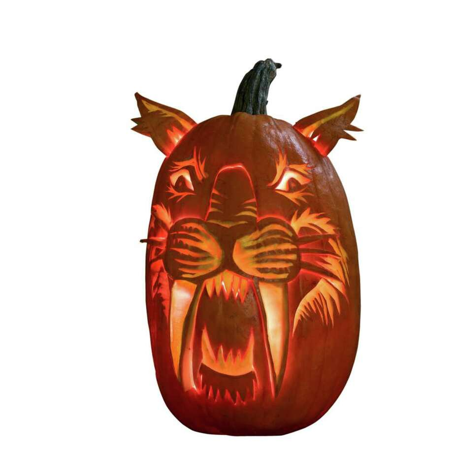 "A sabertooth pumpkin from the book ""Night of the Pumpkinheads,"" by Michael J. Rosen, featuring photographs of actual pumpkins carved by Hugh McMahon  (Dial; 32 pages; $16.99; ages 4-up), Photo: Hugh McMahon Artwork"