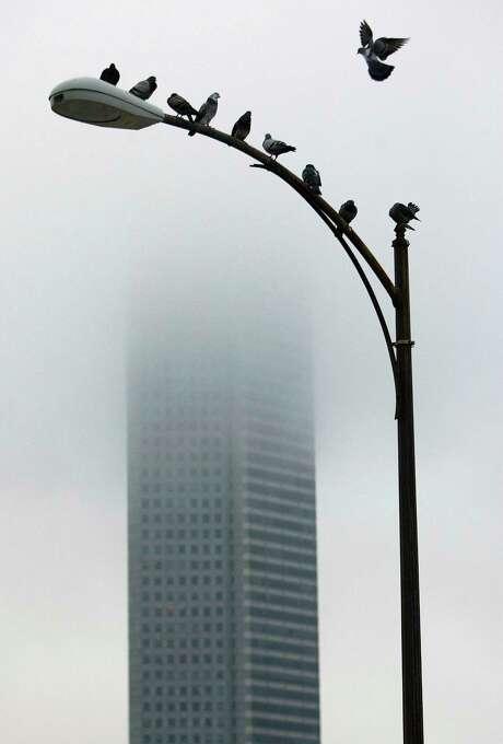 The Chase Tower, downtown. Photo: Johnny Hanson, Houston Chronicle / Houston Chronicle