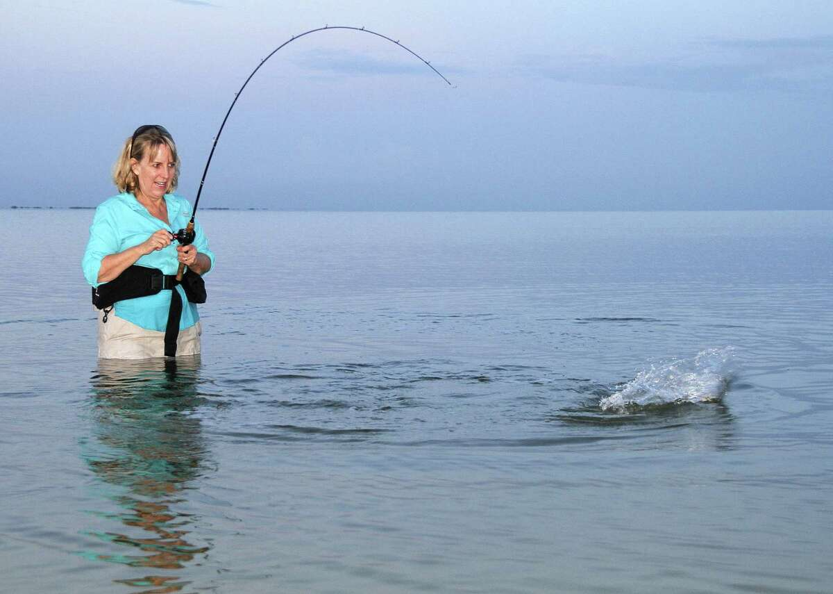 With popular marine fish such as speckled trout thriving in coastal waters, anglers can anticipate excellent fishing as autumn triggers increased fish movement.