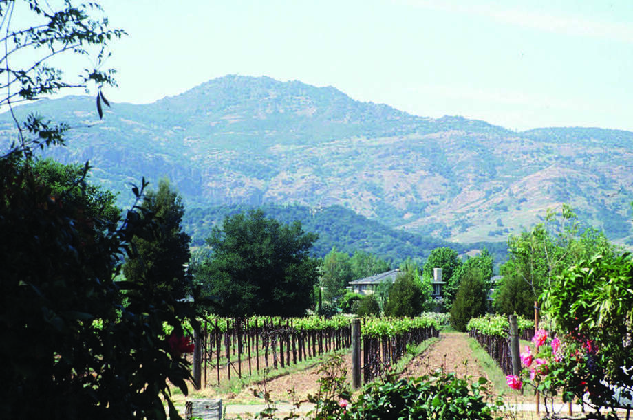 Only a mile long, Yountville, Calif., has become a gourmet paradise in California's wine country. Wine tastings, of course, are also on the itinerary. Photo: Anne Chalfant / Contra Costa Times