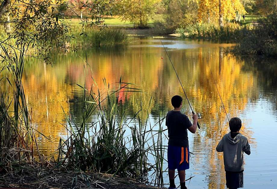 Autumn anglers: Allan Griffiths and Will Price try their luck on the pond at Battle Point Park on Bainbridge Island, Wash. Photo: Larry Steagall, Associated Press