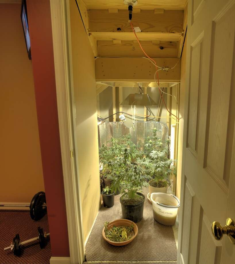 2 – You can't plan to run the grow operation in your home. The board demands that police have to be able come in without notice or cause. Photo: Steve Cicero, Getty Images