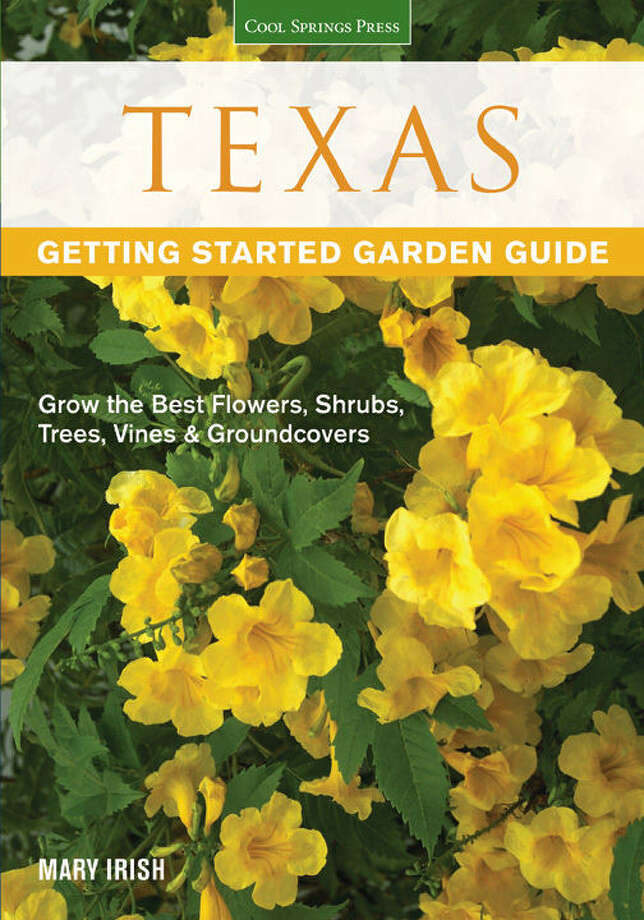 Author Mary Irish lays a good foundation for Texas gardeners in her new book.