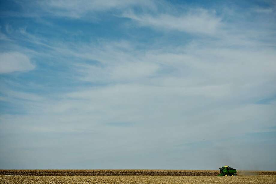 Banner year for ears: A John Deere 9670 STS combine harvests corn outside Malden, Ill. Corn futures fell to a three-year low on signs of increasing supply in the U.S., the world's biggest producer. Photo: Daniel Acker, Bloomberg