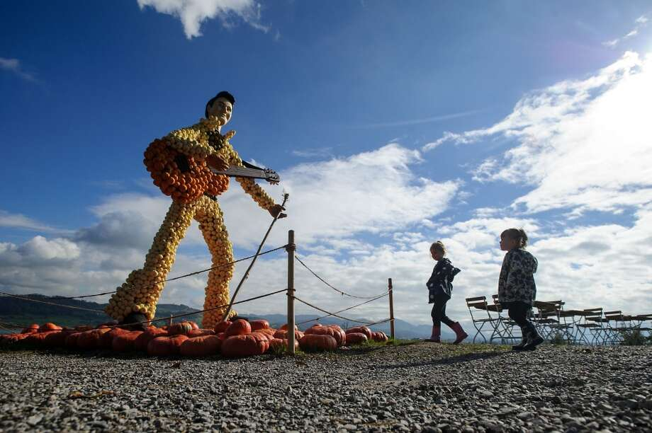 Switzerland: Children look at a statue showing Elvis Presley made of pumpkins. Photo: SEBASTIEN BOZON, AFP/Getty Images