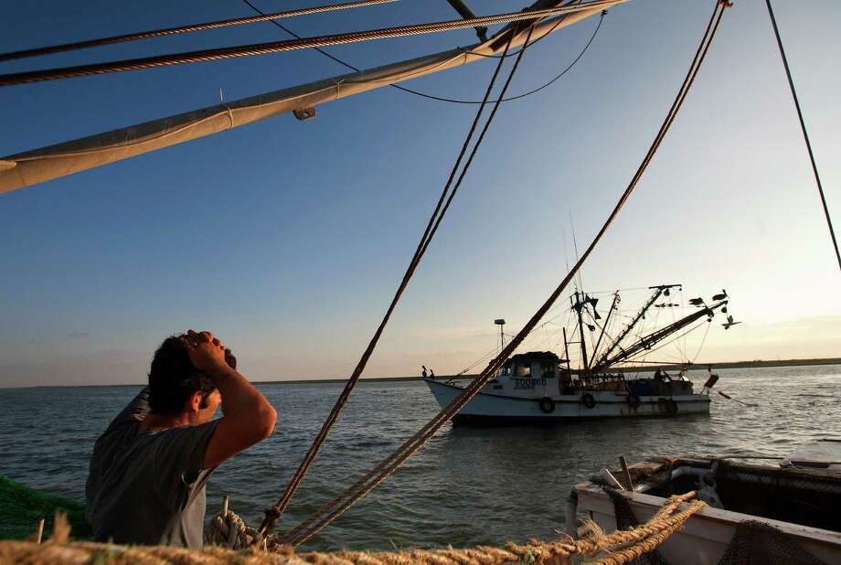 Eric Leshinsky with Discovery Shrimp & Oyster Company, looks at a fellow shrimpers boat after their nets got tangled near the Houston Ship Channel, Friday, Sept. 27, 2013, in Kemah. Eric is an artist and he, along with friend Zach Moser, who is also an artist, bought a shrimp boat to shrimp the area for a better understanding of the Gulf Coast. The two plan to make art pieces from their observations. (Cody Duty / Houston Chronicle) Photo: Cody Duty, Staff / © 2013 Houston Chronicle