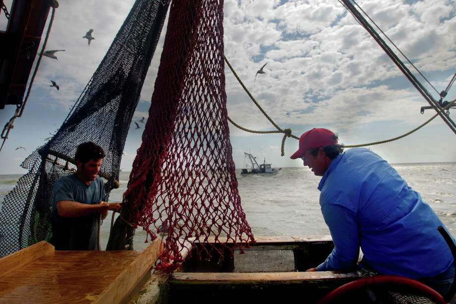 Eric Leshinsky, left, and Zach Moser, right, with Discovery Shrimp & Oyster Company ready the net for another drag while shrimping near the Houston Ship Channel, Friday, Sept. 27, 2013, in Kemah. The two artists bought a shrimp boat to shrimp the area for a better understanding of the Gulf Coast. The two plan to make art pieces from their observations. (Cody Duty / Houston Chronicle) Photo: Cody Duty, Staff / © 2013 Houston Chronicle