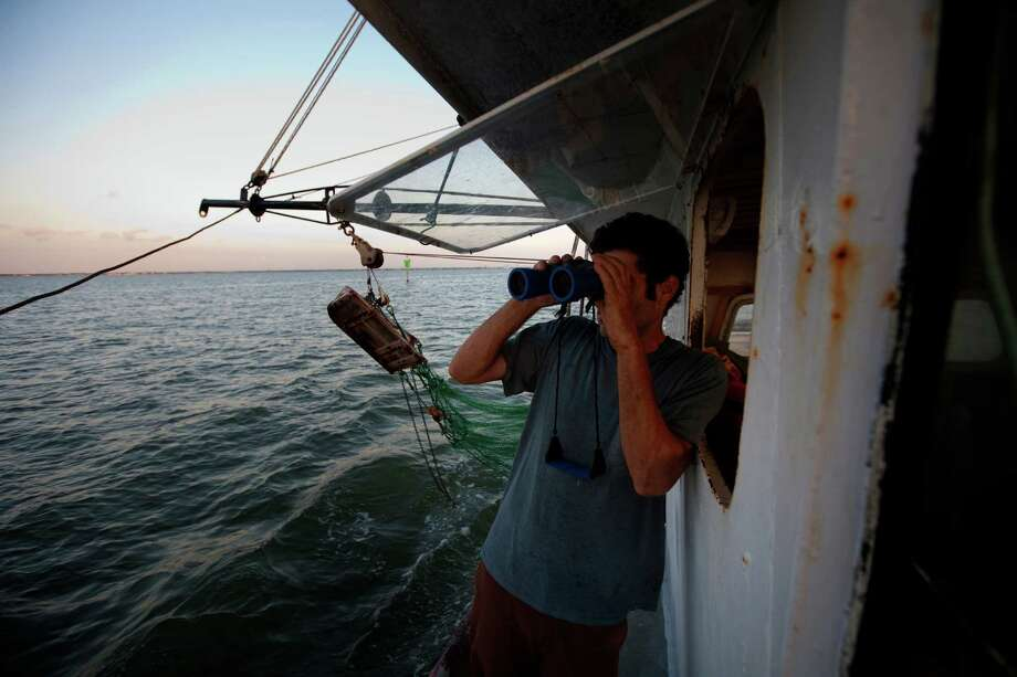 Eric Leshinsky with Discovery Shrimp & Oyster Company, looks at other boats while shrimping near the Houston Ship Channel, Friday, Sept. 27, 2013, in Kemah. Eric is an artist and he, along with friend Zach Moser who is also an artist, bought a shrimp boat to shrimp the area for a better understanding of the Gulf Coast. The two plan to make art pieces from their observations. (Cody Duty / Houston Chronicle) Photo: Cody Duty, Staff / © 2013 Houston Chronicle