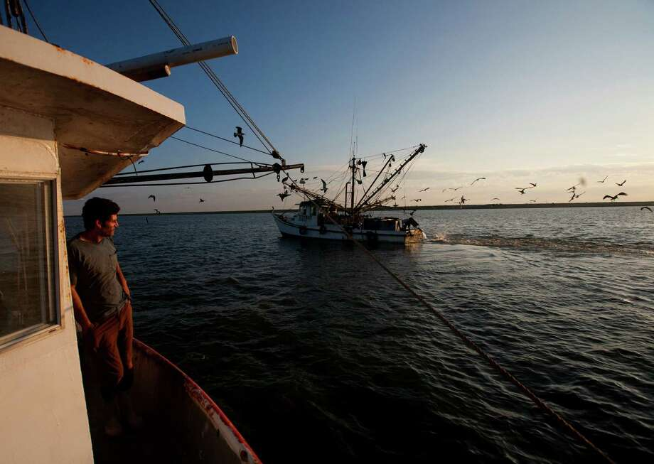 Eric Leshinsky with Discovery Shrimp & Oyster Company, watches a boat pass by while shrimping near the Houston Ship Channel, Friday, Sept. 27, 2013, in Kemah. Eric is an artist and he, along with friend Zach Moser who is also an artist, bought a shrimp boat to shrimp the area for a better understanding of the Gulf Coast. The two plan to make art pieces from their observations. (Cody Duty / Houston Chronicle) Photo: Cody Duty, Staff / © 2013 Houston Chronicle