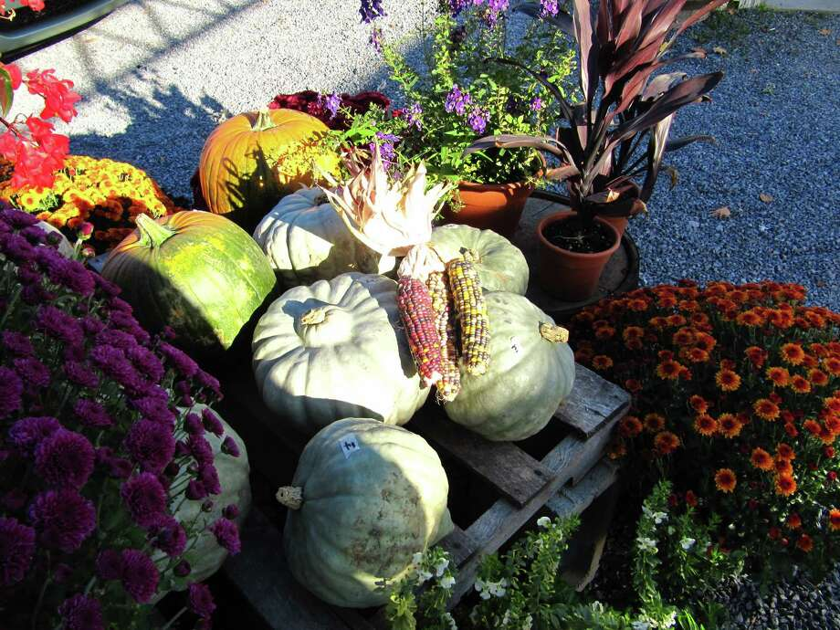 """Fall at the Carrot Barn in Schoharie. """"I took the picture because it had a great variety of fall items that could be purchased there."""" (John P. Spenello)"""