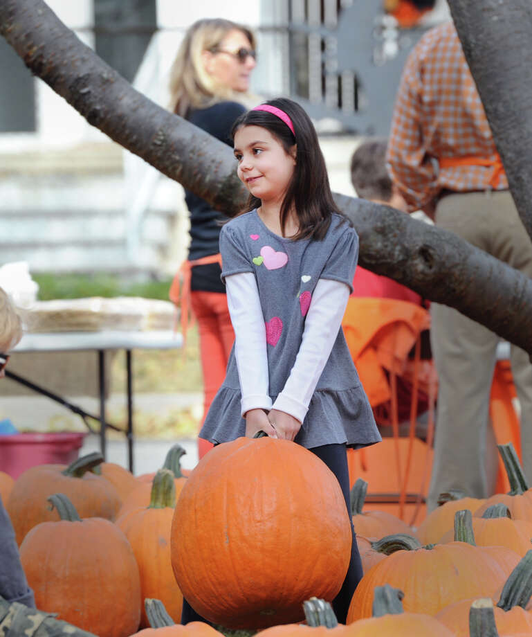 Kate Wentworth, 7, of Old Greenwich, picks a pumpkin during the Old Greenwich School Pumpkin Patch event at the school in Old Greenwich, Saturday, Oct. 19, 2013. Photo: Bob Luckey / Greenwich Time