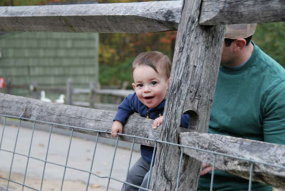 Were you SEEN at Stamford Harvest Festival on Saturday, Oct 19th? Photo: BarkeyPowell/Hearst Connecticut Media Group