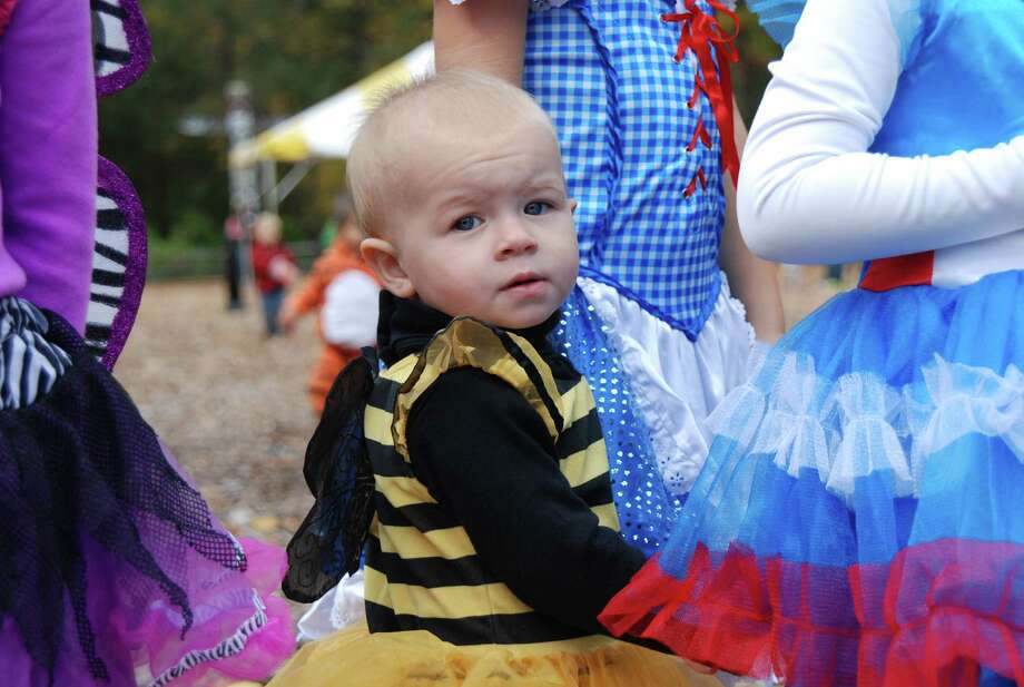 Were you SEEN at the Stamford Harvest Festival on Saturday, Oct 19th? Photo: BarkeyPowell/Hearst Connecticut Media Group