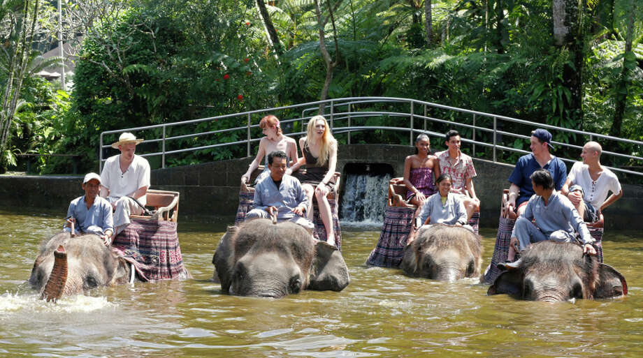 """America's Next Top Model -- """"The Girl Who Gets Kissed on an Elephant"""" pictured: Chris H., Nina, Jourdan, Renee, Marvin, Jeremy and Cory Cycle 20 Photo: Angelo Sgambati/The CW ©2013 The CW Network, LLC. All Rights Reserved Photo: Angelo Sgambati, The CW / ©2013 The CW Network, LLC. All Rights Reserved"""