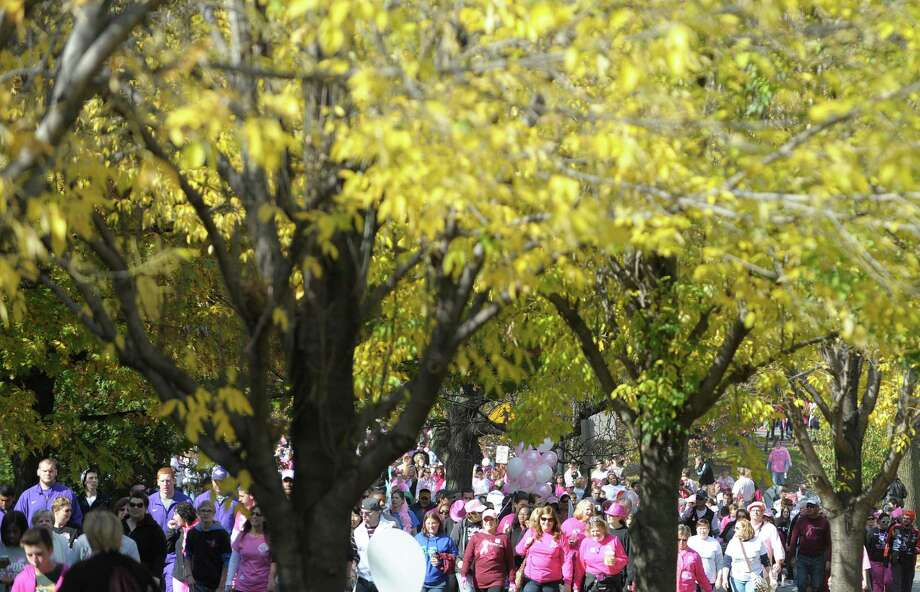 People taking part in the Making Strides Against Breast Cancer Walk make their way along the path at Washington Park on Sunday, Oct. 20, 2013 in Albany, NY.  Organizers said that $1 million dollars was raised at the Albany event and they were expecting 15,000 people to take part in the walk.  For the Eastern Division of the American Cancer Society, which covers New York and New Jersey, 24 walks were held and a total of $20 million dollars was raised, according to organizers.   (Paul Buckowski / Times Union) Photo: Paul Buckowski / 00024068A