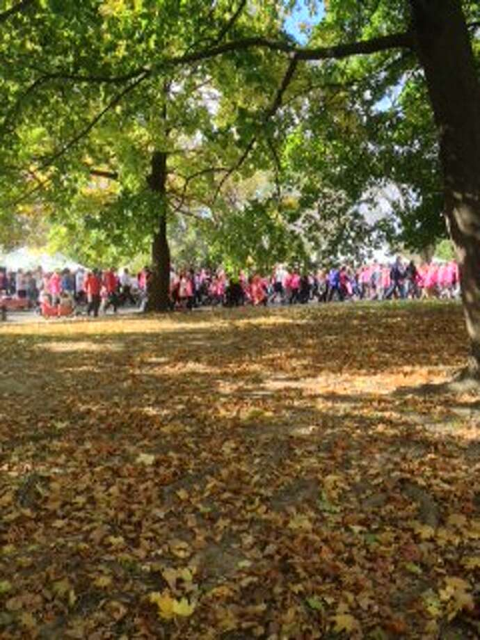 People decked out in pink walk to support breast cancer. Photo by Courtney Suitto.