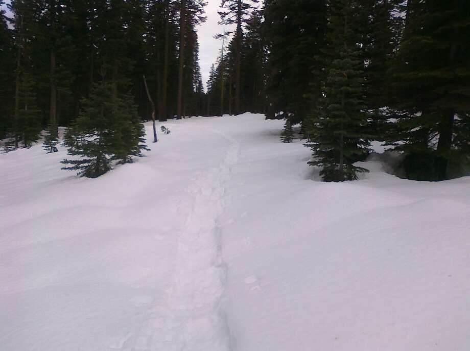 Here's the path less traveled. Photo: Tahoe Star Tours