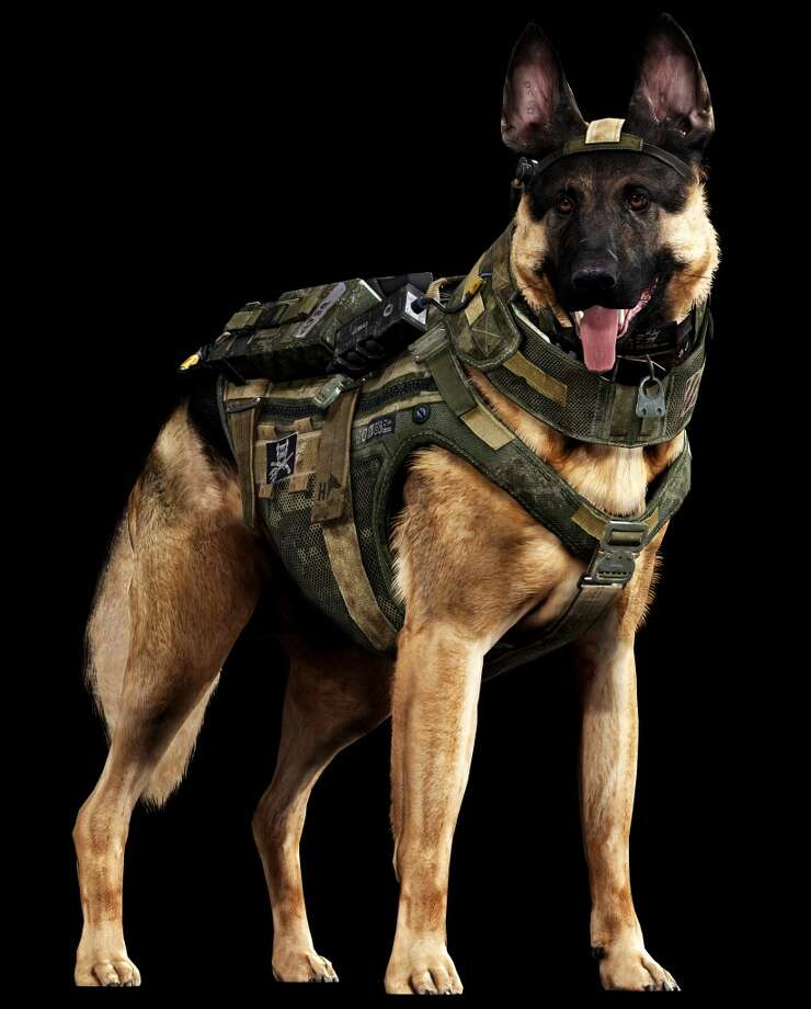 "This undated rendered image provided by Activision shows canine star, Riley. ""Call of Duty: Ghosts"" isn't due until November 2013, but Riley has already become the breakout star of the military shoot-'em-up. After footage released earlier this year revealed that ""Ghosts"" would feature a four-legged soldier, the Internet uniformly wagged its tail in anticipation. (AP Photo/Activision) Photo: Associated Press"