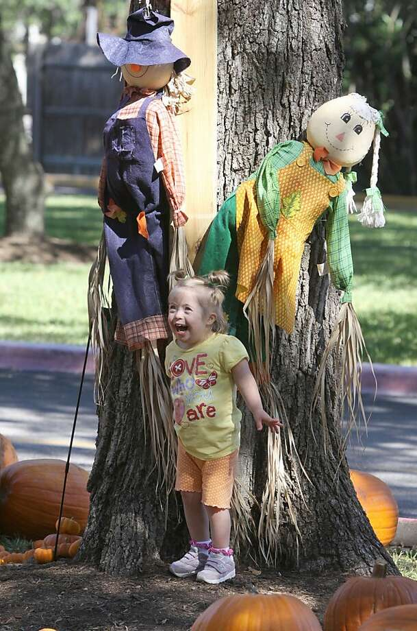 Straw-filled effigies are hilarious!Haley Andrews shares a laugh with a couple of scarecrows at the Memorial Drive United Methodist Church Pumpkin   Patch in Houston. Photo: Alan Warren, Associated Press