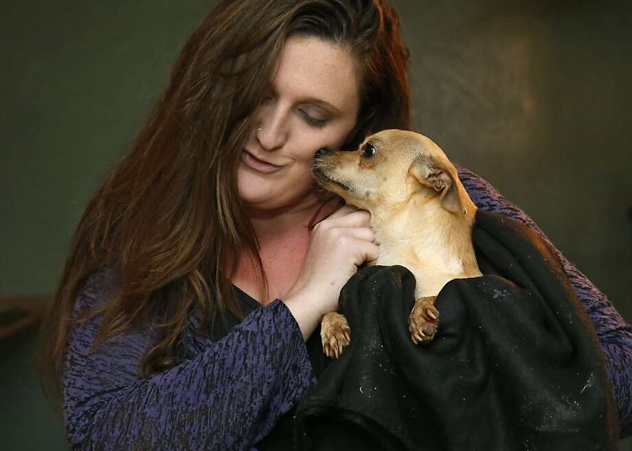 The best part of the job:Maeghan Hadley, who rescues and rehabs abused and neglected dogs and horses on   her 1 Day Ranch in Bethel Acres, Okla., enjoys the kisses of a grateful resident. Photo: Sue Ogrocki, Associated Press
