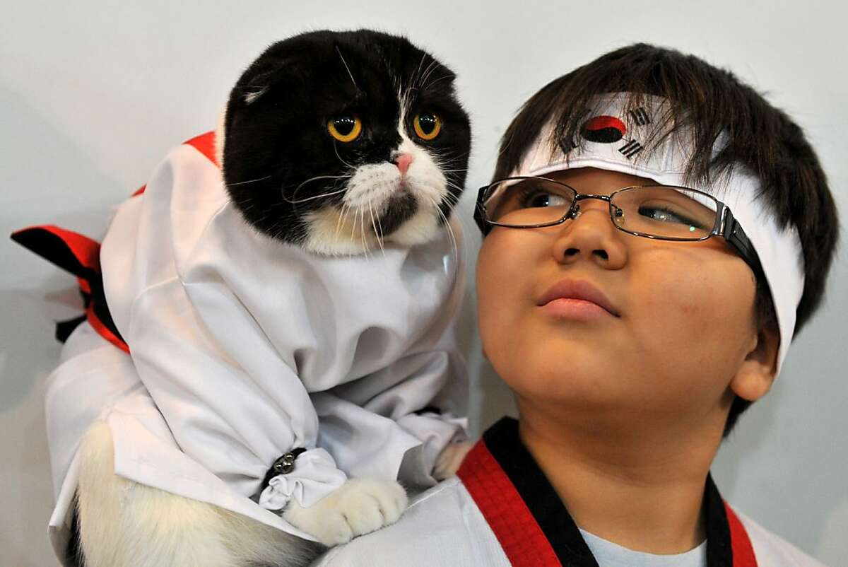 When you take the dead mouse from my paw, it will be time for you to leave: A martial arts novice and his mentor attend a cat exhibition in Bishkek, Kyrgyzstan.