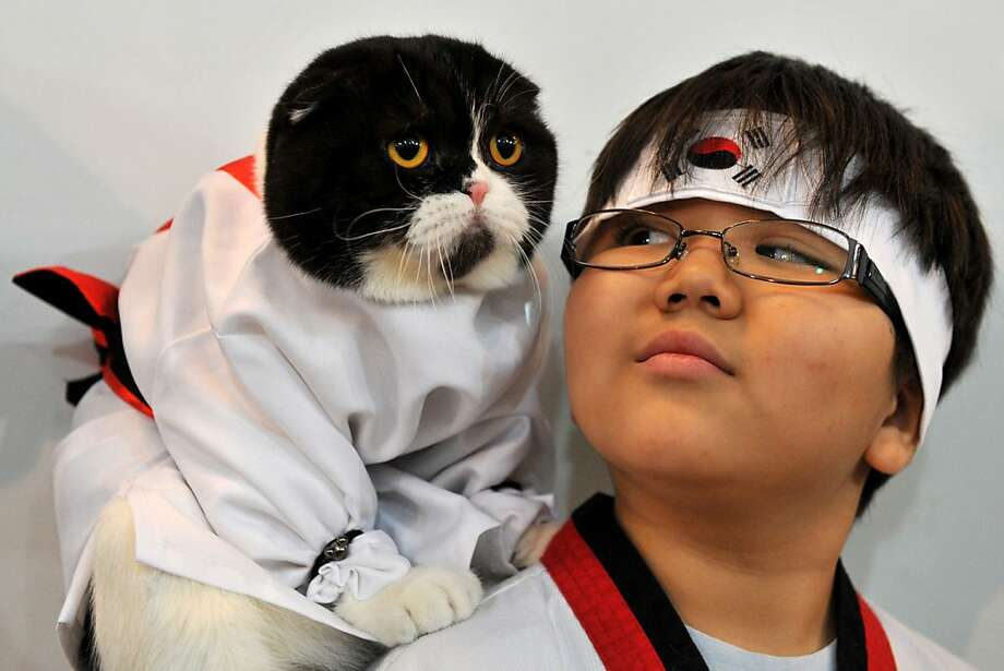 When you take the dead mouse from my paw, it will be time for you to leave: A martial arts novice and his mentor attend a cat exhibition in Bishkek, Kyrgyzstan. Photo: Vyacheslav Oseledko, AFP/Getty Images