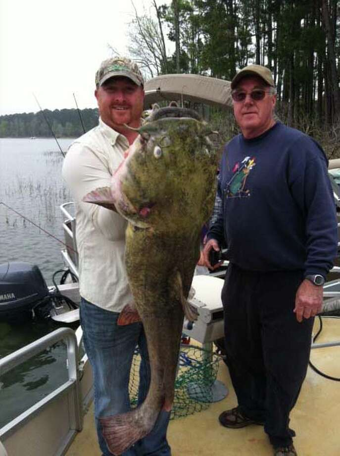 Catfish in Sam Rayburn and Toledo Bend can get very large!