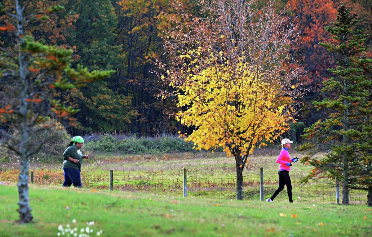 Karen Milliner, left, of Albany and Ronnie Ippolito of Schenectady jog through what's left of the autumn foliage at the Crossings Wednesday Oct. 23, 2013 in Colonie, NY. (John Carl D'Annibale / Times Union)