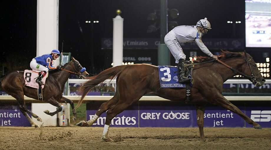 Game on Dude's Horse of the Year prospects have been ruined at the Breeders' Cup the past two years, so trainer Bob Baffert is trying a new tack this year for the 6-year-old. Photo: Morry Gash, Associated Press