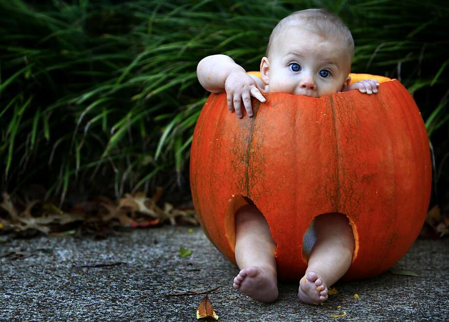 The only way to escape pumpkin pants jail ... is to EAT YOUR WAY OUT! Good thing 7-month-old Jude Whittington of Memphis, Tenn., loves pumpkin. Photo: Jim Weber, Associated Press