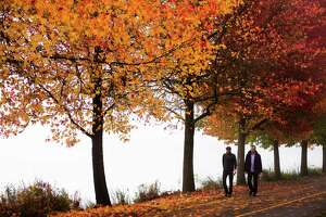 Surrounded by fall colors, two men meander the path Thursday, Oct. 24, 2013, around Green Lake in Seattle. A dry, high pressure system in the region has caused the thick, white soup to blanket Seattle.
