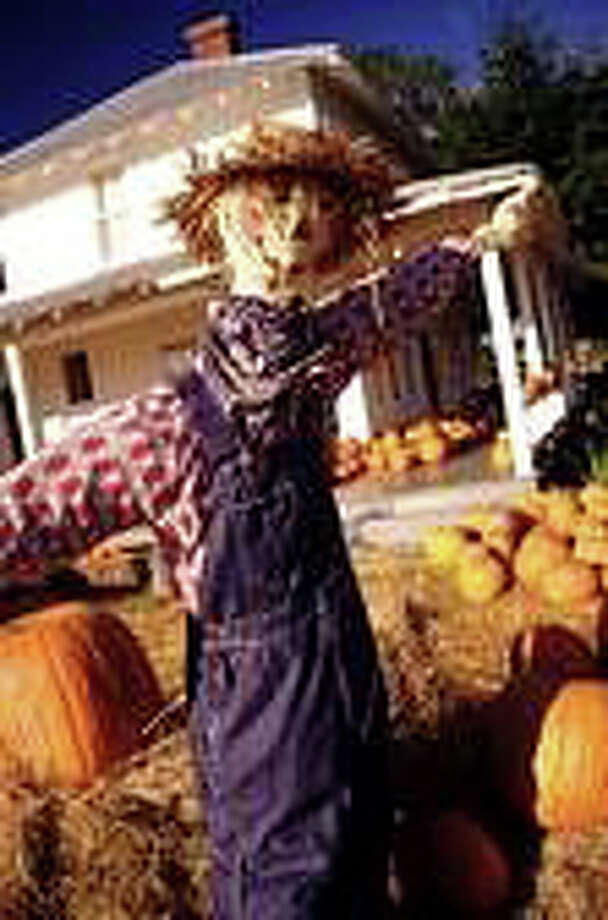 A scarecrow making contest and fundraiser is on tap for this weekend on the Pequot Library's Great Lawn. Photo: Contributed Photo / Fairfield Citizen