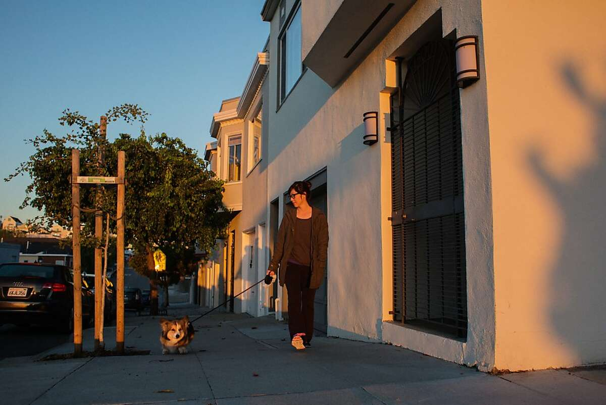 Giselle Chow walks a dog named Toast as one of her jobs in the