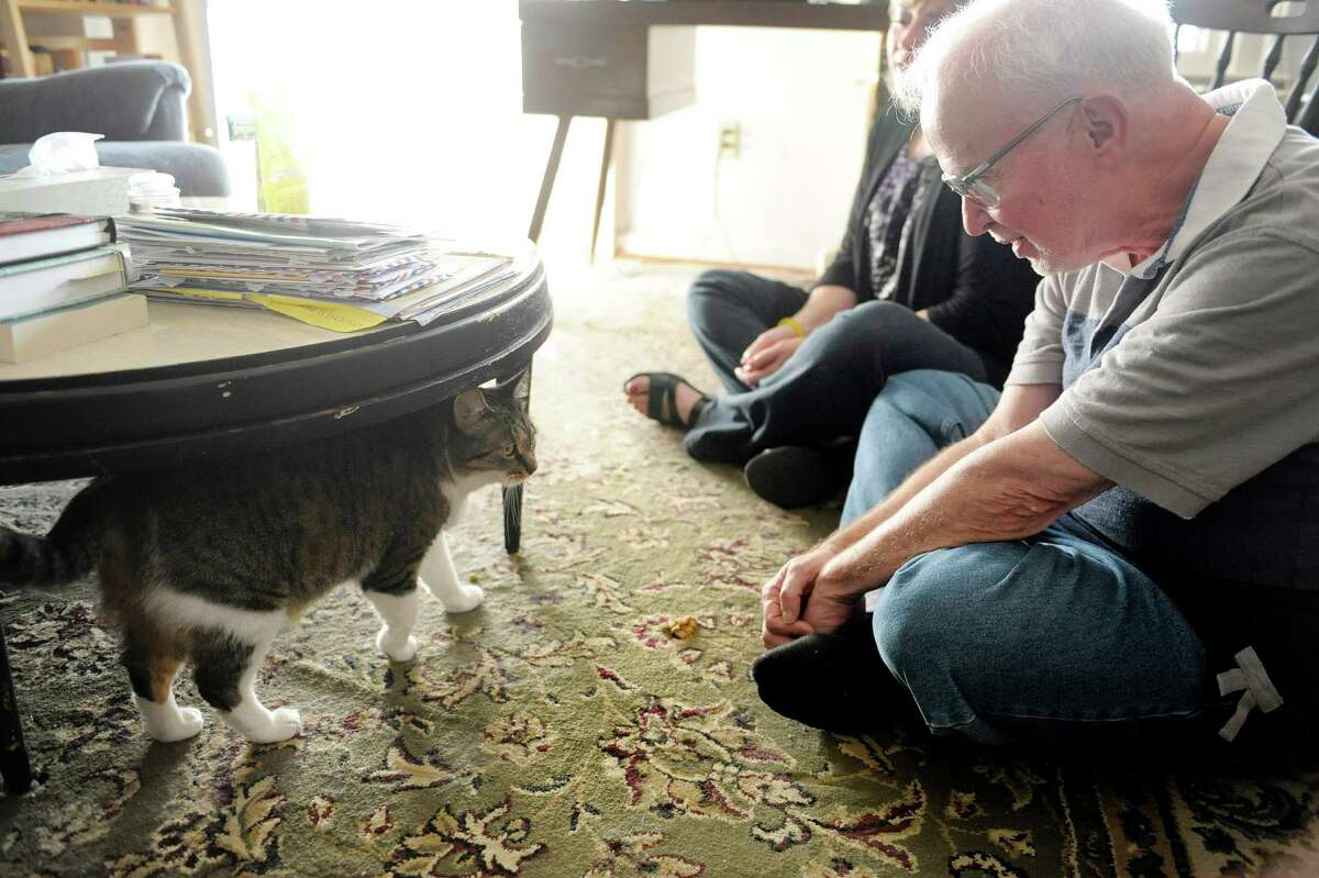 Mary Howard, background, the previous owner of Mittens, and David Valcek, the new owner of Mittens try to coax the cat out from under a table at Valcek's home on Tuesday, Oct. 15, 2013 in Watervliet, NY. (Paul Buckowski / Times Union)