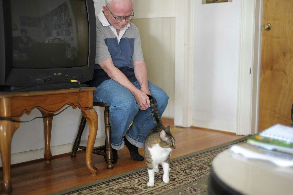 David Valcek, the new owner of Mittens, sits in his home with his cat on Tuesday, Oct. 15, 2013 in Watervliet, NY. (Paul Buckowski / Times Union)