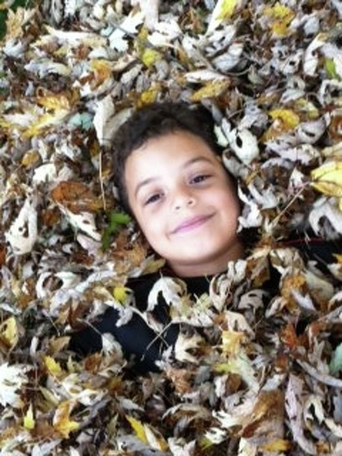 After a hard five minutes of helping his mom. Jennifer Chatain. gather leaves, Elijah decided to make leaf angels and bury himself. Elijah, 6, attends Saint Kateri Parish School and was excited to play in the leaves because the Colonie family's old home was on a busy street with no yard or leaves.