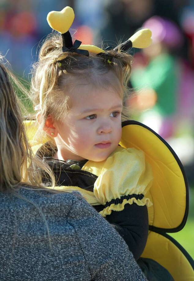 Kendra Pires, 1 1/2, is dressed as a Buzzy Bee for the 21st annual Halloween on the Green in Danbury, Conn, on Saturday October 26, 2013. Photo: H John Voorhees III / The News-Times Freelance