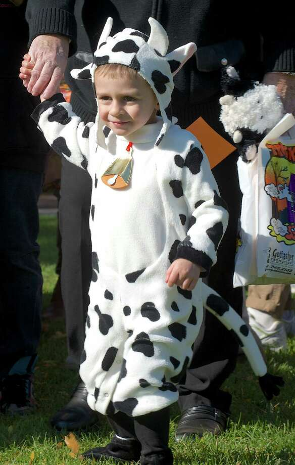 Sage Windebank, 3, of Danbury attended the 21st annual Halloween on the Green in Danbury, Conn, on Saturday October 26, 2013 dressed as a cow. Photo: H John Voorhees III / The News-Times Freelance