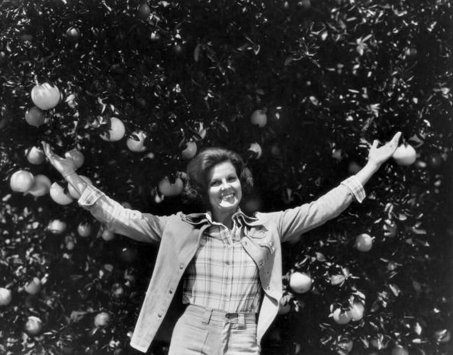 Citrus promoter and anti-gay activist Anita Bryant in an orange grove. Photo: Lynn Pelham, Time & Life Pictures/Getty Image / Lynn Pelham